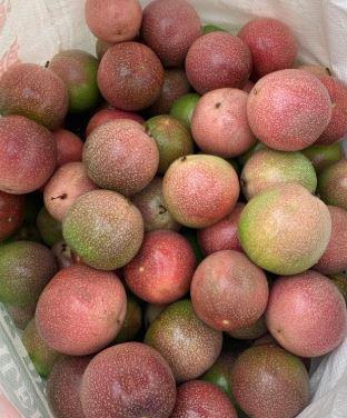 Passion fruit Wayanad
